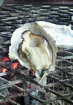 でっかい牡蠣