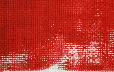 Red on Canvas