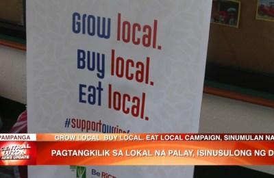 Pagtangkilik sa lokal na palay, isinusulong ng Department of Agriculture   News