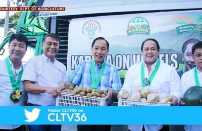 Industriya ng kalabasa patok sa Nueva Ecija