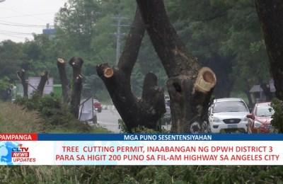 Tree  cutting permit, inaabangan ng DPWH District 3 para sa higit 200 puno sa FIL-AM Highway