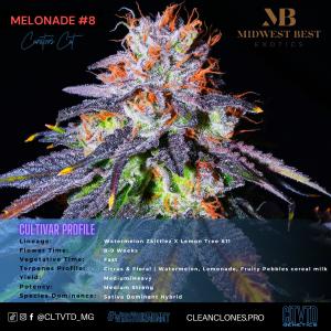 Melonade #8