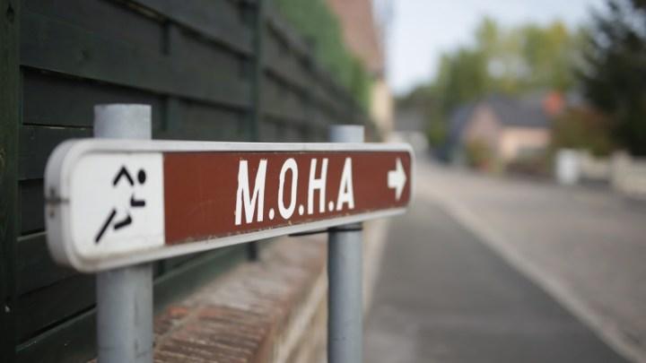 03/07/ 2021 – MOHA (Obourg) MEETING DES VACANCES