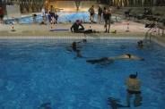 piscine_CSO (8)