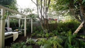hammock restroom garden