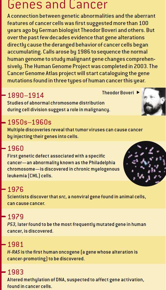 cancer 333