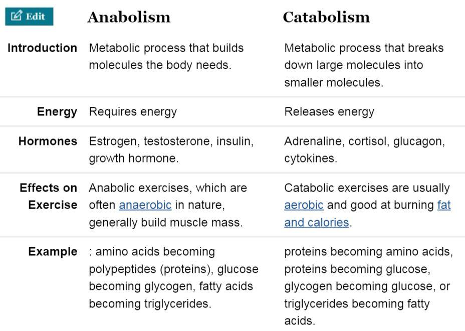 catabolic hormones.JPG