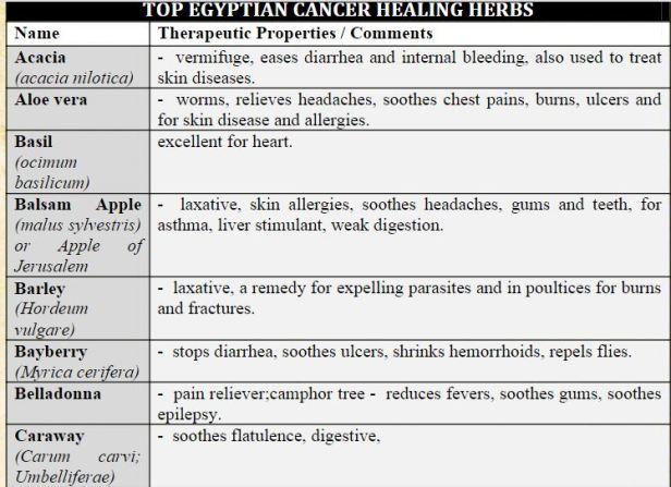 egyptian herb 1