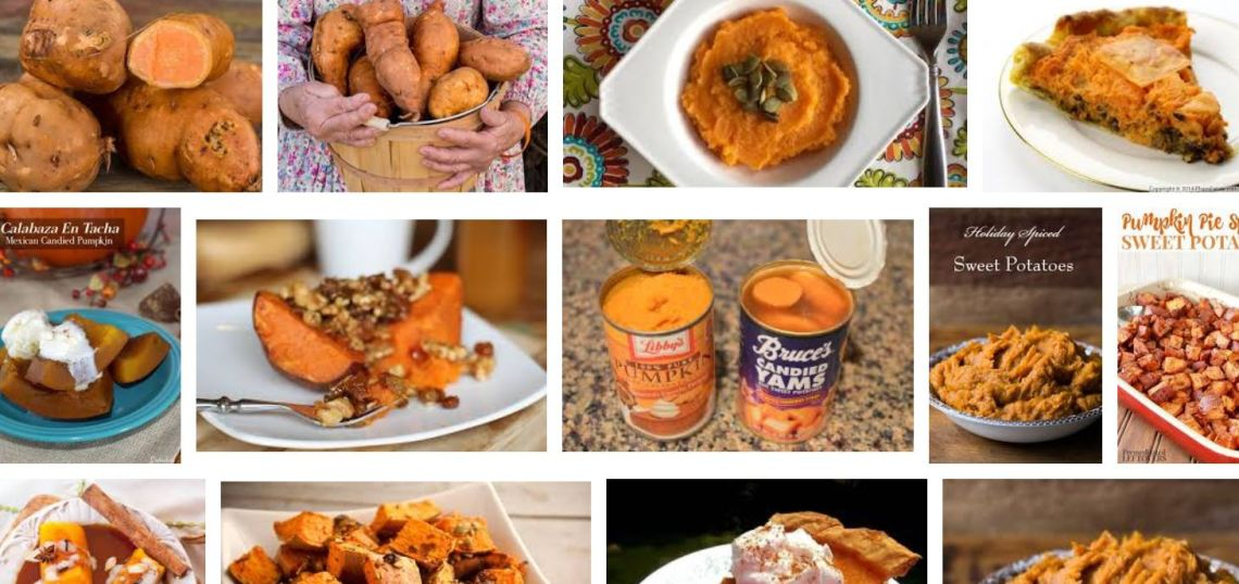 aym pumpkin 4