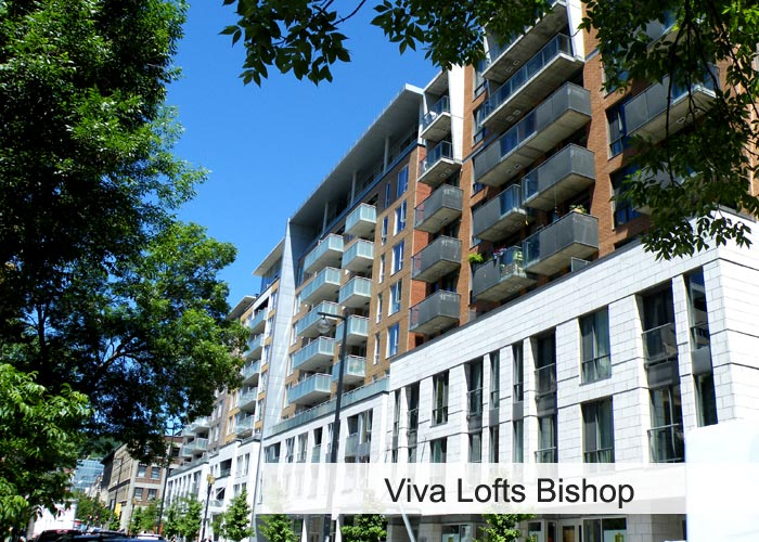 Viva Lofts Bishop Condos Appartements