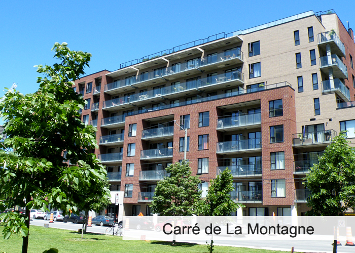 Carré de La Montagne Condos Appartements