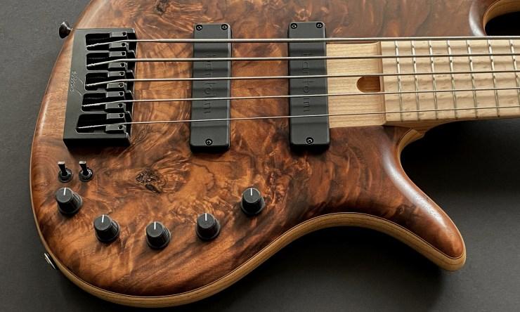 Erick Gold Series 5-String Bass