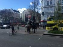 Pferde auf der Reeperbahn