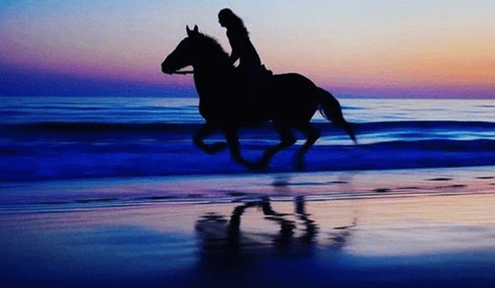 Like falling off horse and sea