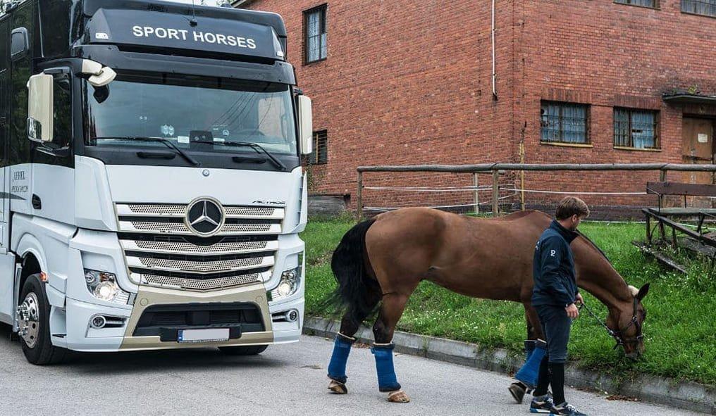 Come viaggiare con il cavallo. Una sosta