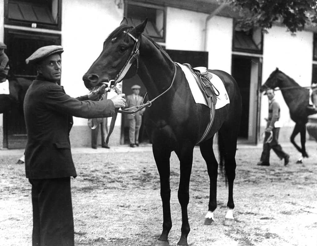 Nearco in the stables