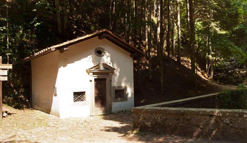 The Foresta di Vallombrosa Saltino in Tuscany on horseback