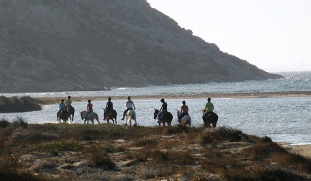 The Amalfi Coast on Horseback