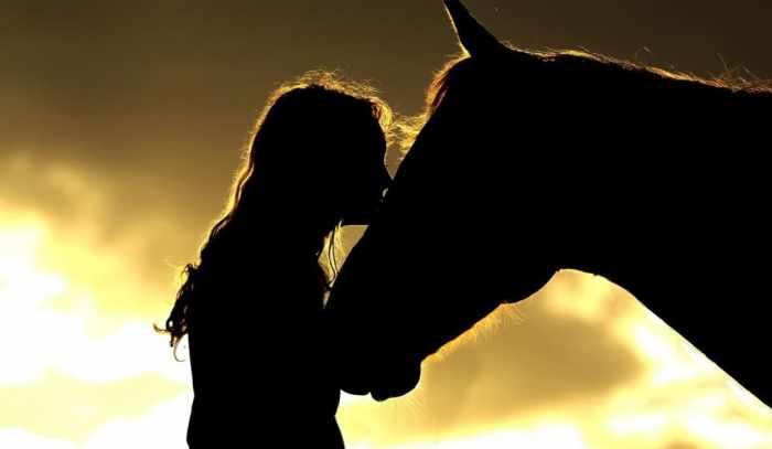 Polo da donna con ricamo Polo Club Cavallo Italia