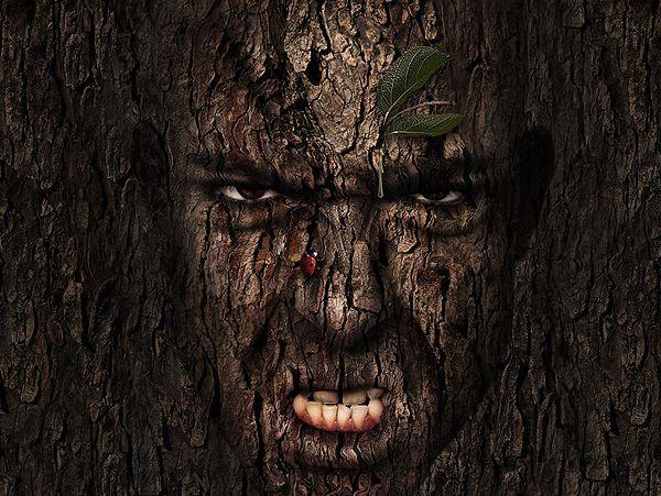 Tree Man Photo Manipulation
