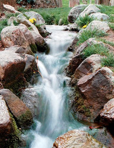 The Small Waterfall in The Small Gathering