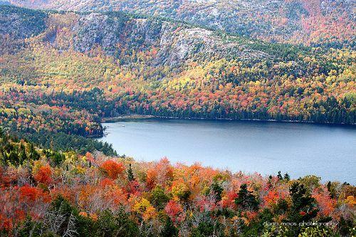 Autumn Foliage in Acadia National Park Maine