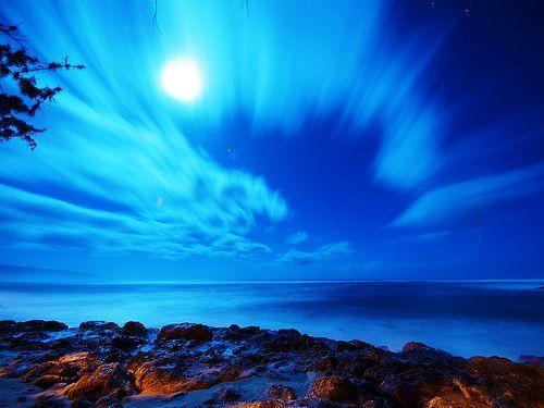 moonlight shadow, por paul bica