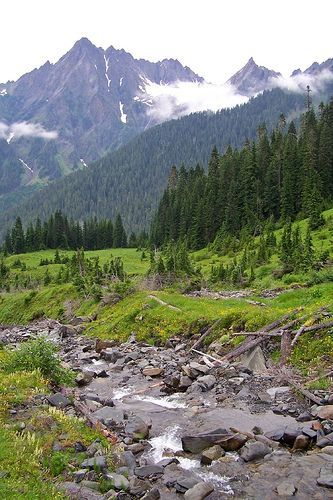 enchanted valley, olympic national park, por ((brian))
