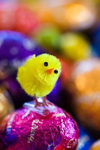 Easters Coming, por aussiegall