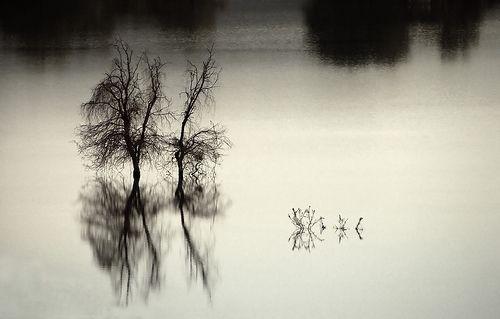 Sunday Is Gloomy, por Hamed Saber