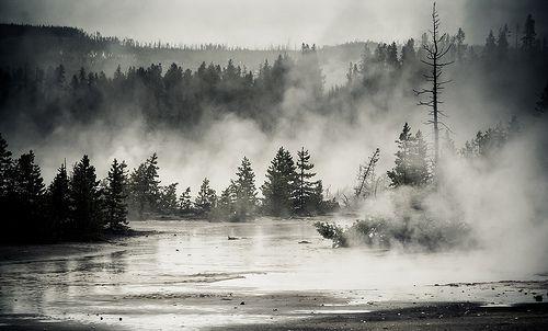 I looked elsewhere, por Henrik Johansson