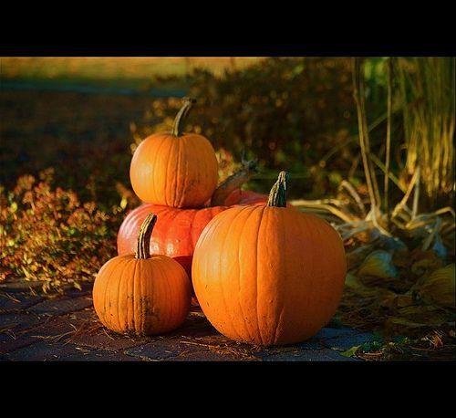 Halloween spirit...!!!, por Denis Collette