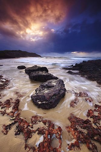 Long Reef Sunrise, por Tim Donnelly