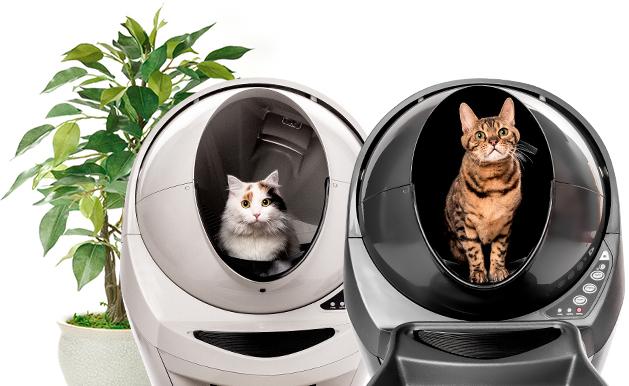 ¿Cuál es la mejor caja de arena para gatos para controlar los olores?