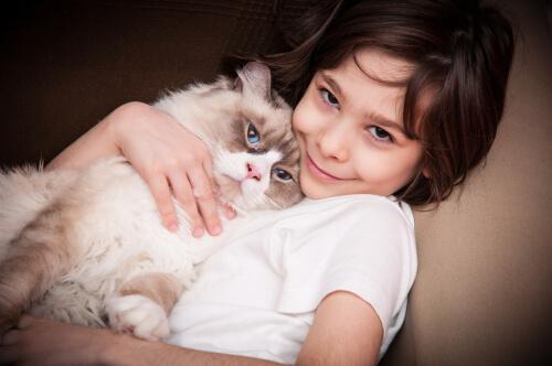Cómo hacer que los gatos y los niños se lleven bien