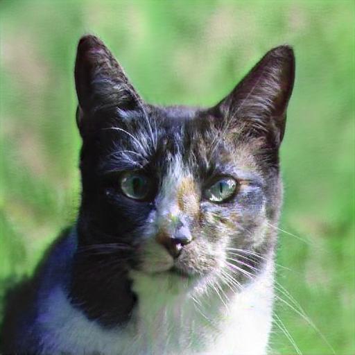 ¿Qué tan inteligente es un gato?