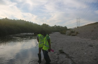 Soft-bottomed section of the LA River.