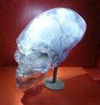 Crystal Skull - Indiana Jones and the Adventure of Archaeology