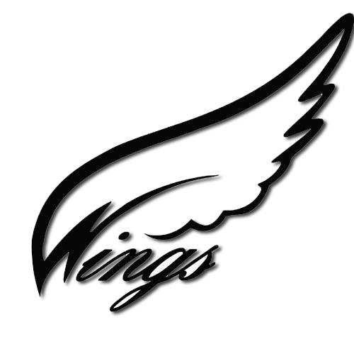 Skydive Wings Logo