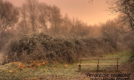 Concurso de fotografía «Se acerca el invierno»