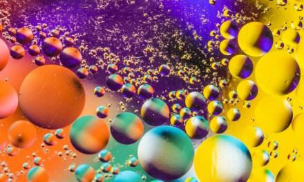 Buscando la mejor foto de «Sinfonía de colores»