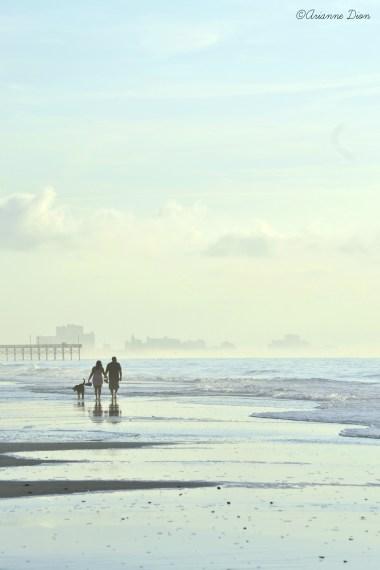 arianne-dion-promenade-paradisiaque