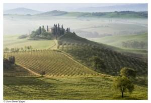 01-Doux matin de Toscane-403