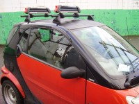 New Roof Rack Fit for Smart Car