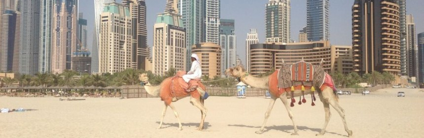 Karawana po plaży w Jumeirah