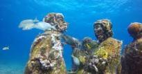 sri lanka underwater museum trinco sandy bay beach east coast dive (3)