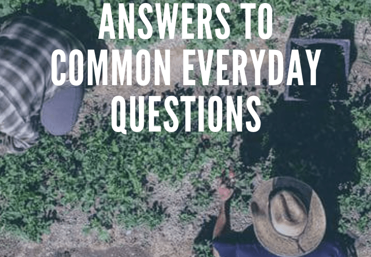 The truth about farming – answers to everyday common questions
