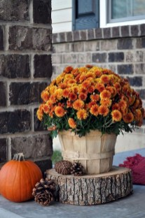 Affordable Fall Decorations Ideas To Try Right Now01