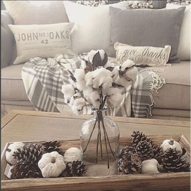 Amazing Fall Living Room Decorating Ideas To Try Asap14
