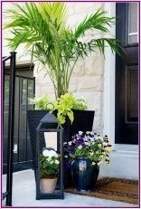 Pretty Planter Design Ideas For Summer Porch To Looks Amazing20